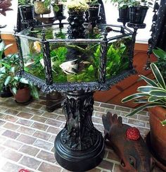"steampunktendencies: "" Victorian aquarium from 1880's #steampunktendencies…"