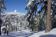 Skiing in Troodos. Cyprus
