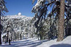 Skiing in Troodos. Cyprus