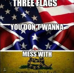The Stars and Stripes, The Southern Cross & The Gadsden
