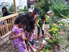 """Vernon and Throop Community Garden in Bed-Stuy, Brooklyn received $500 to convert a section of the garden into a """"children's discovery garden."""" The group is creating a wildlife sanctuary for birds and butterflies, and using the green space as a means to teach children about plant life, rain water harvesting and conservation systems."""