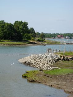 World's End Land preserve, Hingham, MA photo by Michele Nelson