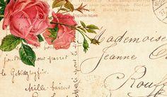Old Roses postcard 2
