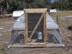 Hoophouse for chickens - Homesteading Today