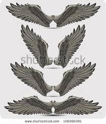different positions for eagle wings