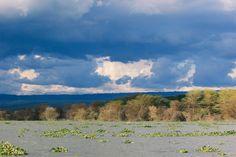 Lake Navaisha, Kenya.
