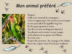 """""""Activité FLE"""" """"Blog francés primaria"""" """"activité francés"""""""