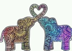 elephant heard <3