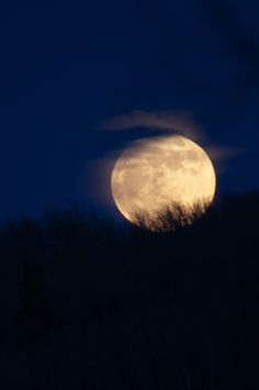 Good night, magical Moon. So lovley I love the Moon more then the Sun