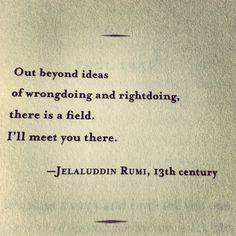 Out beyond ideas of wrongdoing & rightdoing, there is a field. I'll meet you there. ~ Rumi