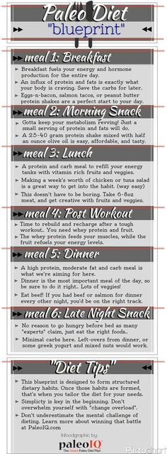 The Ultimate Guide to Eating Paleo Infographic Food, Clean - new tribal blueprint diet