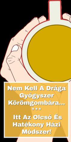 Son Luna, Dragon, Dragons