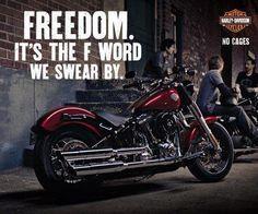 Freedom Roar, Harley Davidson Ads, Animals Anime Harley Davidson, Motorcycles Wheels, Harley Davidson Lifestyle, Cars Bikes