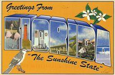 "Vintage postcard from ""The Sunshine State,"" Florida, USA."