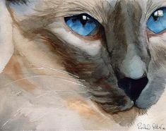 Siamese cat Seal Chocolate Point art Print of my by rachelsstudio