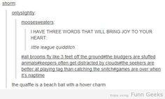 Little league quidditch!