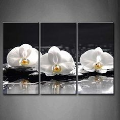 First Wall Art® - 3 Panel Wall Art Spa Concept Three White Orchid With Stones And Wet Background Painting The Picture Print On Canvas Flower Pictures For Home Decor Decoration Gift piece (Stretched By Wooden Frame,Ready To Hang) Firstwallart http://www.amazon.com/dp/B00MWSQ0MA/ref=cm_sw_r_pi_dp_lij0wb177ADKM