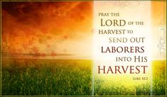 Free Autumn Harvest eCard - eMail Free Personalized Autumn Cards Online