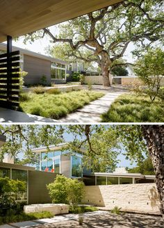 Various paths in the landscaped courtyard, designed by Bernard Trainor + Associates, lead to the different areas of the home.