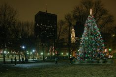 boston tree lighting boston common snow holidays happy holidays holidays events beacon