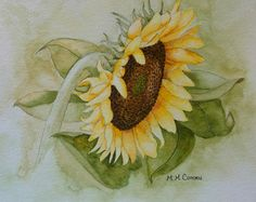Sunflower IV: ORIGINAL Watercolor painting by M. M. Cohorn on watercolor paper, unmatted and unframed.
