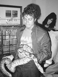 "Michael Jackson playing with his snake ""Muscles"" with a La Toya Jackson cut out in the background."