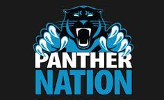 Panther Nation, rise up! Nc Panthers, Carolina Panthers Football, Football Team, Panther Football, Football Spirit, Carolina Panthers Wallpaper, Nfl Flag, Carolina Pride, Panther Nation