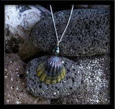 Rare Dark Hawaiian Moonrise Shell & Tahitian Black Pearl Sunrise Shell Silver Necklace