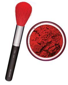 Shu Uemura Pinceau rouge et Pigments pures de Make Up For Ever