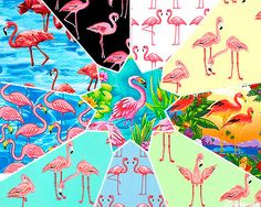 OMG!  10 different flamingo fabrics!!!  It's like they knew I was coming!
