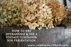 Dry Hydrangeas and Put In Old Beer Crate