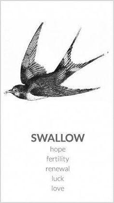 51 Ideas Swallow Bird Tattoo Meaning Beautiful For 2019 - Tattoos Swallow Tattoo Meaning, Swallow Bird Tattoos, Tattoo Bird, Swallow Bird Meaning, Barn Swallow Tattoo, Wild Tattoo, Cute Tattoos, Beautiful Tattoos, Tattooed Guys