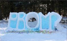 Snow #promposal