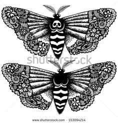 Lacy death's-head moth. Abstract hand drawn vector illustration.  - stock vector