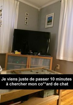 30 Snapchat de chats absolument hilarants - page 4