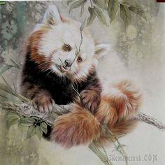 Чудесные животные от китайского художника Ли Чже 李喆