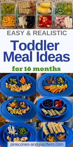 I'm sharing what my toddler eats at 16 months old. Healthy and easy toddler meal ideas for 16 months or for young toddlers age months. baby breastfeeding baby infants baby quotes baby tips baby toddlers Healthy Toddler Meals, Toddler Lunches, Kids Meals, Toddler Food, Toddler Dinners, Toddler Friendly Meals, Toddler Daycare, Snacks Kids, Fruit Snacks