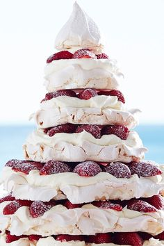 Australian Christmas Tree, Aussie Christmas, Baked Meringue, Christmas Desserts, Christmas Cakes, Christmas Recipes, Salty Cake, Savoury Cake, Clean Eating Snacks