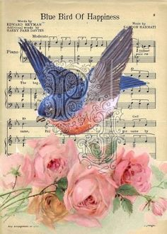 I love birds and i love roses...  The sheet music brings beautiful memories of my Grandmother.  Blue bird of happiness