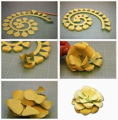 Bits of Paper: Rolled Paper Flowers