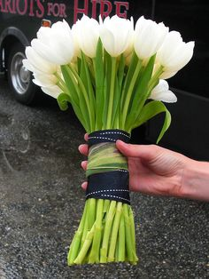 Super Ideas For Wedding Bouquets Tulips Navy Ribbon Tulip Bridal Bouquet, White Tulip Bouquet, Tulip Wedding, Bouquet Wrap, Hand Bouquet, Yellow Tulips, Bride Bouquets, Wedding Colors, Wedding Flowers