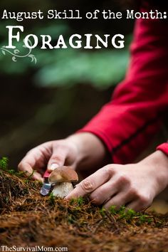 August Skill of the Month: Foraging Skills