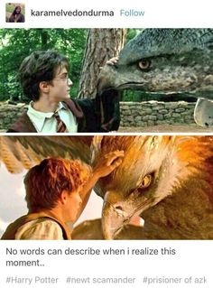I realized this right when I saw it and I had a little freak out moment in the theatre. Such a beautiful parallel
