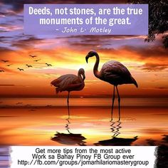 Deeds, not stones, are the true monuments of the great.  – John L. Motley  Get more tips from the most active Work sa Bahay Pinoy FB Group ever http://fb.com/groups/jomarhilariomasterygroup  thanks: http://500px.com/photo/74438349/flamingo-by-andre-jhuna?from=popular&only