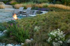 Matrix planting needs to resemble the natural landscape of a natural ecosystem. Get more details on matrix planting and much more on Total Landscape Care! Landscape Design, Garden Design, Landscape Grasses, Tall Ornamental Grasses, Lakeside Garden, Prairie Garden, Natural Ecosystem, Small Shrubs, Matrix