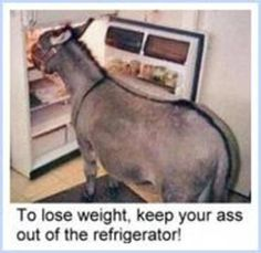 Yes, for sure....to lose weight keep your ass out of the refrigerator.......isn't that the truth.