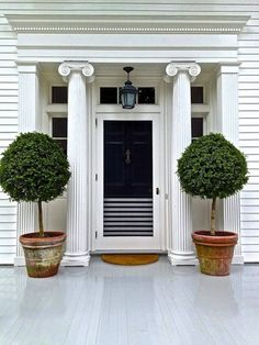 potted trees for front porch