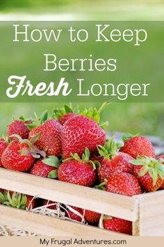 Super easy trick to keep berries fresh longer! Once you get home just submerge your berries in a solution of 1 part vinegar to 10 parts water. Then...