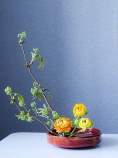 001-basic-upright-style-moribana-8120.jpg (596×800)