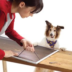 Replace door and window screening quickly and easily with simple tools. Use pet-proof screening for durability